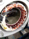 Élévateur de 500 kilogrammes avec le levage stable et vertical de crochet