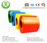 Bobine en acier enduite par couleur (DX52 DX53D)