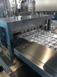 Alibaba Website Packaging Machine Tablets Blister Packing Machine