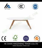 Hzct044 Moiraのコーヒーテーブルは家具白いに金属をかぶせる