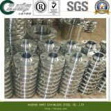 310h… Stainless Steel Flange