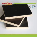 Brown e compensato concreto della cassaforma di colore nero