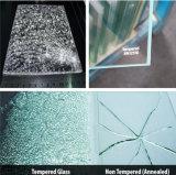 3-19mm flache gebogene abgehärtete /Tempered Glaswand-Partition