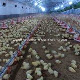 肉焼き器のための養鶏場の機械装置の&Equipment