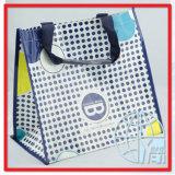 Sacs d'emballage tissés par pp (ENV-PVB127)