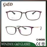 Optische Frame van uitstekende kwaliteit van het Oogglas Ultem het Plastic Eyewear met Tempel 8006 van de Vezel van de Koolstof