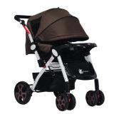 Klassischer Art-Baby-Spaziergänger mit verschiedenen Optionen