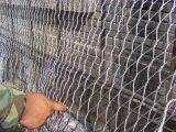 編むステンレス鋼ワイヤーロープの網の塀
