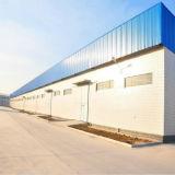 Stahlkonstruktion-Farben-Stahlblech-Lager (KXD-SSW1496)