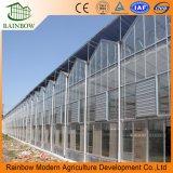 Mejor venta automática Venlo material de vidrio invernadero