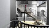 Abierto acero Riser y escaleras de acero inoxidable con acero inoxidable y / o de vidrio Barandilla