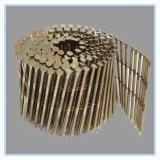 Chiodo Twisted comune galvanizzato variopinto della bobina della tibia di vendite calde
