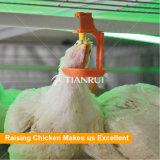 Schicht-Huhn-Haus-verwendeter automatischer Geflügel-Nippel-Trinker