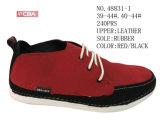 No 48831 ботинки ботинок конька людей Stock