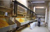 PAC para o tratamento da água e a diminuição Waste do bacalhau