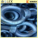 Boulon d'oeil d'acier inoxydable de prix usine DIN 580 M80