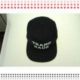 Chapéu feito sob encomenda do Snapback do estilo novo para a venda