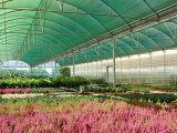 Sun-Farbton-Filetarbeit für die Landwirtschaft