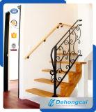 Polvo cubierta decorativa revestida de hierro forjado barandilla de la escalera / Acero Baranda