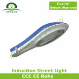 40W Induction Street Light Road Lamp Outdoor Light