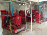 комплект генератора Biogas 150kw