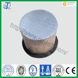 Anodo sacrificale R100 della lega del magnesio di Hongtai