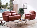 Sofas européens de cuir d'importation de modèle
