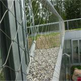 Сетка загородки веревочки провода нержавеющей стали