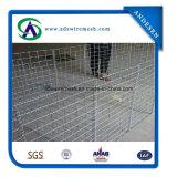 Casella resistente di Gabion utilizzata come barriera di Hesco
