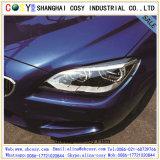 높은 광택 있는 차 PVC 필름 훈장을%s 고품질을%s 가진 변화 색깔 스티커