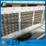 De kleine Lopende band van het Product van het Document van de Fabriek Voor het Maken van het Dienblad van het Ei in Nigeria