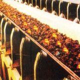 ネオプレンのCr Made Fireresistant Conveyor Beltのための