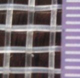 Het nieuwe Maagdelijke HDPE Plantaardige Anti Netto Insect van de Tuin