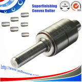 Superfinishing Precision Crowned Roller Wr Series Auto Water Pump Bearing com Double Row Raceway
