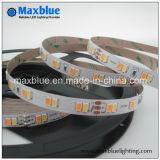 Прокладка белизны SMD5630 СИД CCT регулируемая DC24V 112LEDs/M двойная