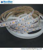 Indicatore luminoso di striscia di colori LED di RGB+CCT 5