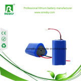 2600mAh paquete de la batería del Li-ion 12V 18650 para las luces de Fishling