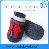 Le crabot d'animal familier respirable de tailles de la maille 7 chausse des accessoires d'animal familier