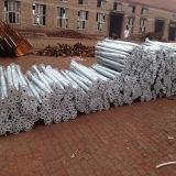 Le professionnel a fait les piles au sol galvanisées par prix bas de vis hélicoïdale