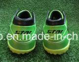 緑の標準的なインドアサッカーはフットボールの靴に蹄鉄を打つ