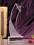 De Trofee van het kristal (0511)