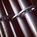 熱いすくいの良質および価格の電流を通されたRinglockの足場