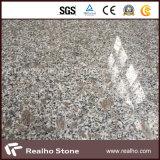 Mattonelle di pietra dentellare poco costose cinesi del granito della perla G383 del Rosa per la pavimentazione
