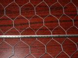 최신 복각 직류 전기를 통한 6각형 철사 그물세공