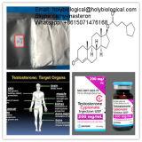 Esteroide anabólico Cypionate De Testosterone Cypionate del músculo de la hormona masculina del aumento