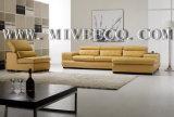 Sofa en cuir (TB-59#)
