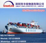 Transporte do frete de mar de China a Karachi, Paquistão