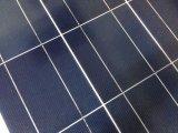 Panneau solaire polycristallin (DSP-80W)