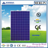 TUV 세륨 UL를 가진 150W 다결정 태양 전지판