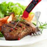 Difusión de la voz de Digitaces que habla el Bbq y el termómetro del alimento de la carne del horno para asar a la parilla la hornada que cocina y que bebe con el contraluz y el altavoz